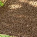 How to Weed Proof Flower Beds