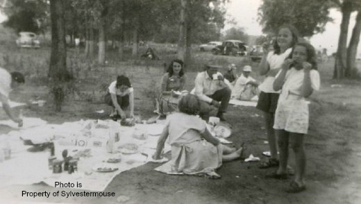 Family Picnic - Photo from Sylvestermouse Family archieves